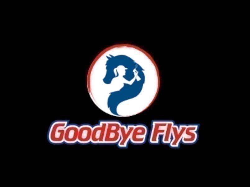 Goodbyeflys